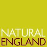 NatEng_logo